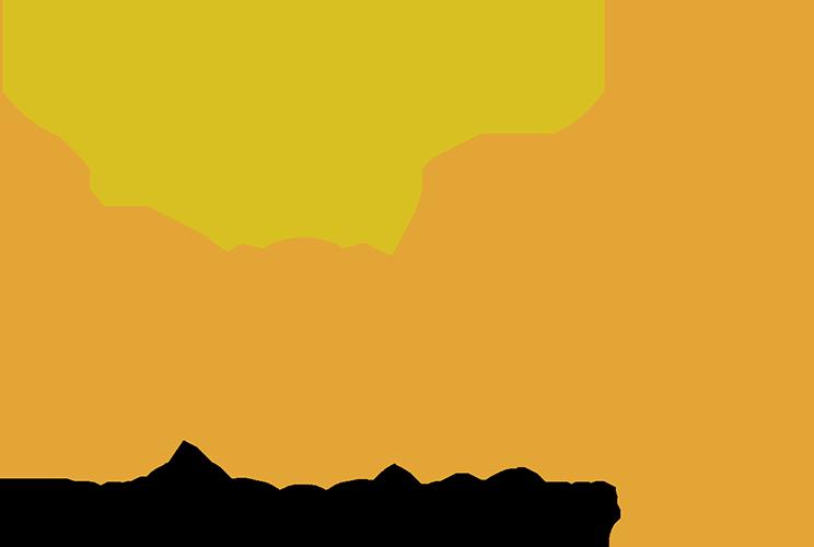 logo VOKA Ambassadeur 2018